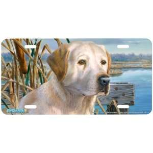 5326 Duck Alert Yellow Labrador Retriever Dog License Plate Car Auto
