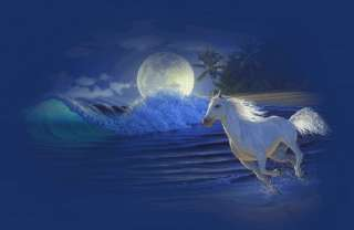 Animated White Horse With Free Music Amazing Nice