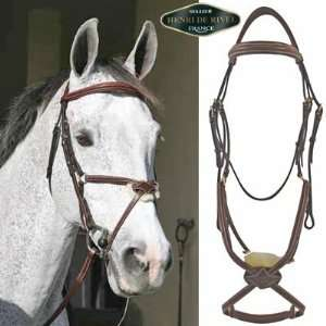 HDR Stress Free Raised Figure 8 Bridle with Reins
