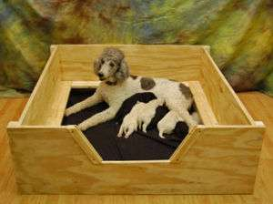 Whelping Box 32x32 Small w/RAILS Dog,Puppy,Pen,Free S&H