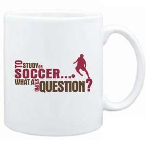 New  To Study Or Soccer  What A Stupid Question