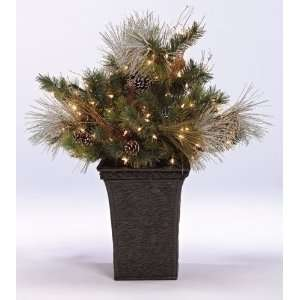 3 Pre Lit Foyer Pine Potted Artificial Christmas Tree